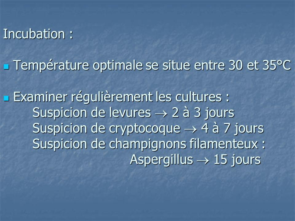 Incubation :  Température optimale se situe entre 30 et 35°C  Examiner régulièrement les cultures : Suspicion de levures  2 à 3 jours Suspicion de cryptocoque  4 à 7 jours Suspicion de champignons filamenteux : Aspergillus  15 jours