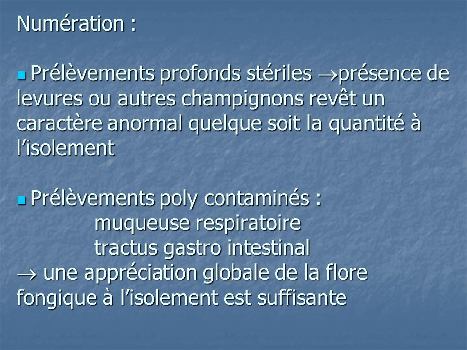 Numération :  Prélèvements profonds stériles présence de levures ou autres champignons revêt un caractère anormal quelque soit la quantité à l'isolement  Prélèvements poly contaminés : muqueuse respiratoire tractus gastro intestinal  une appréciation globale de la flore fongique à l'isolement est suffisante