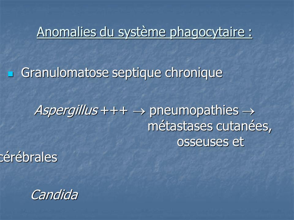 Anomalies du système phagocytaire :