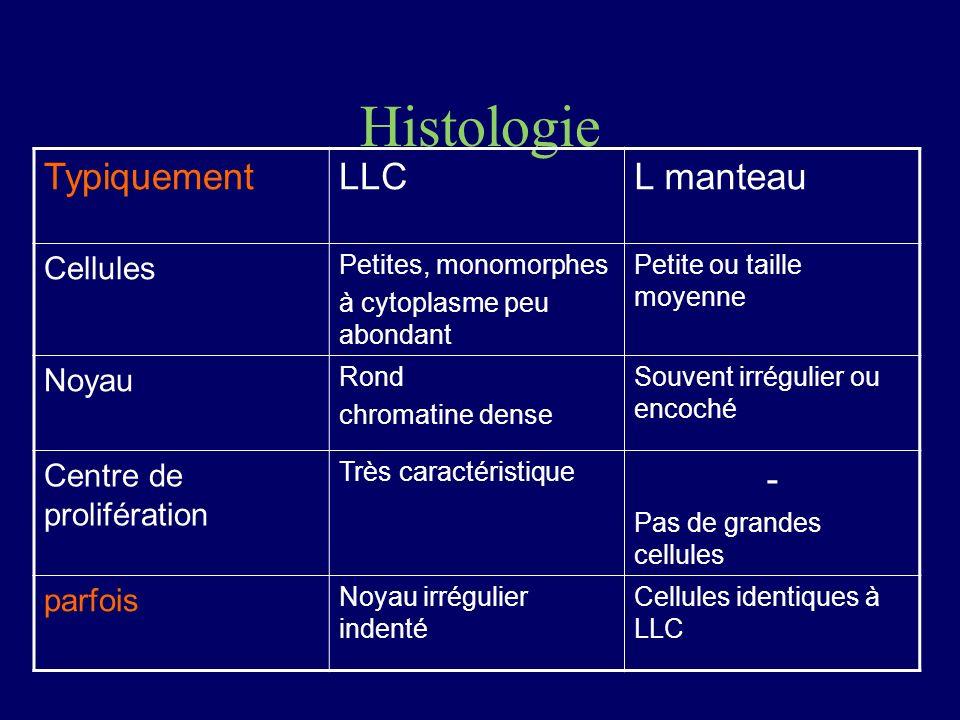 Histologie Typiquement LLC L manteau - Cellules Noyau
