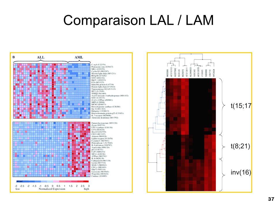 Comparaison LAL / LAM