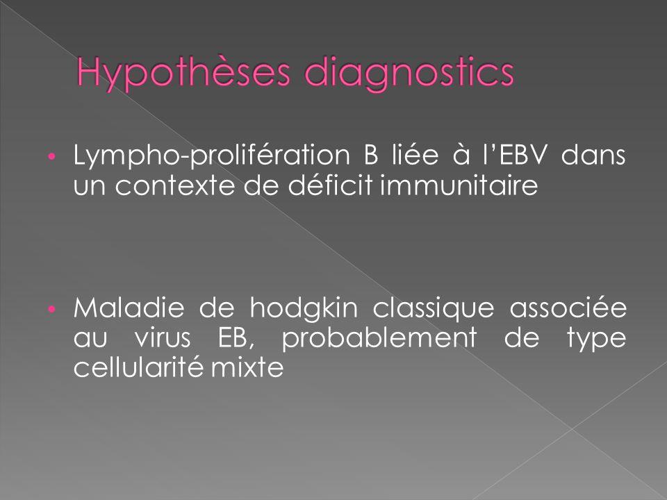 Hypothèses diagnostics