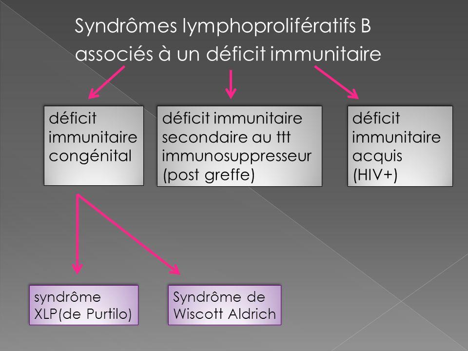 Syndrômes lymphoprolifératifs B associés à un déficit immunitaire