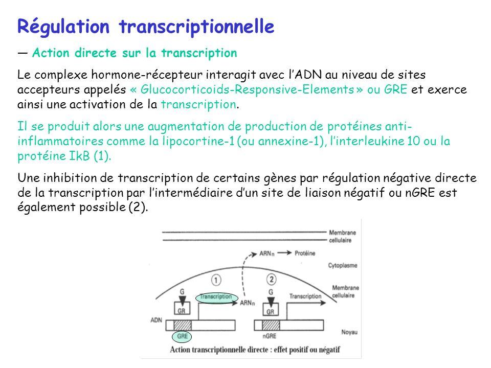 Régulation transcriptionnelle