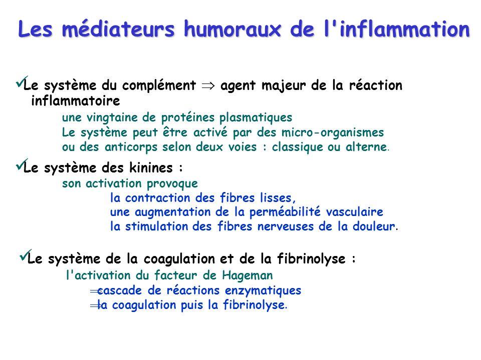 Les médiateurs humoraux de l inflammation