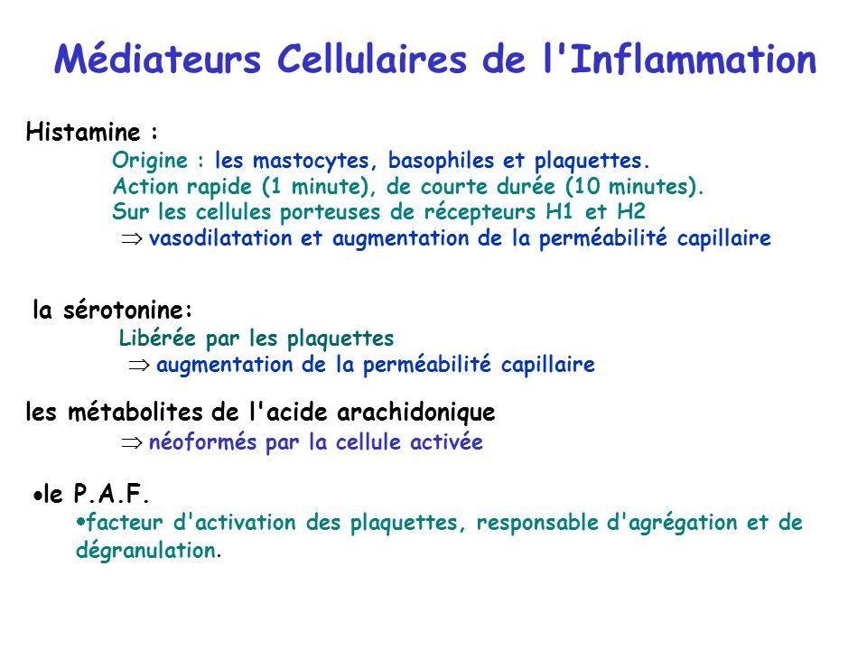 Médiateurs Cellulaires de l Inflammation
