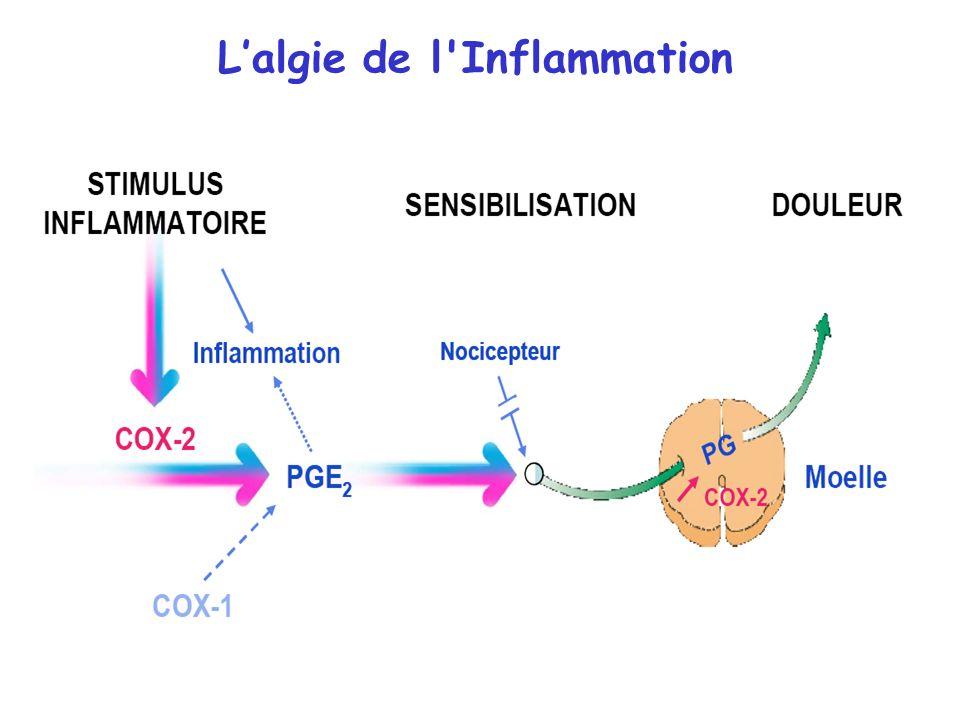 L'algie de l Inflammation