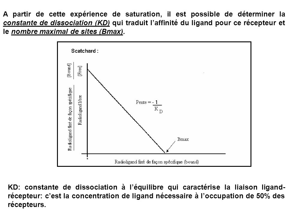 A partir de cette expérience de saturation, il est possible de déterminer la constante de dissociation (KD) qui traduit l'affinité du ligand pour ce récepteur et le nombre maximal de sites (Bmax).
