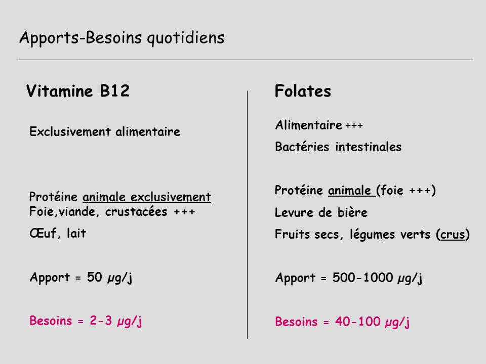 Apports-Besoins quotidiens