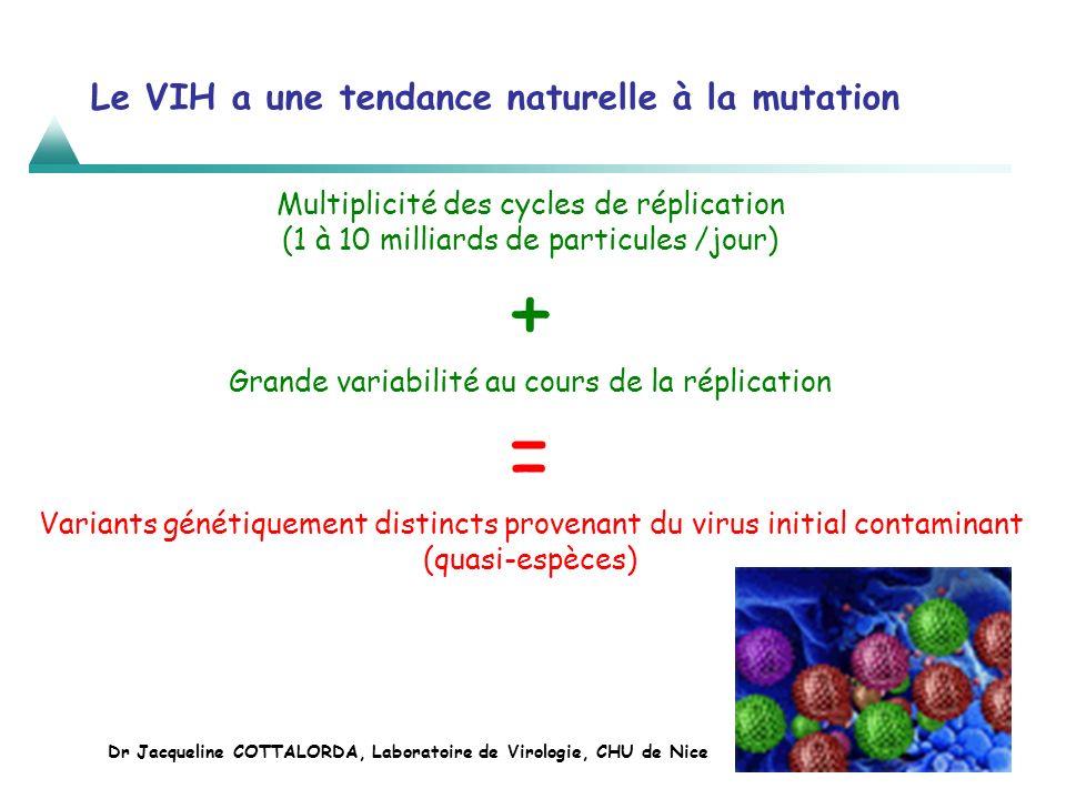 Le VIH a une tendance naturelle à la mutation