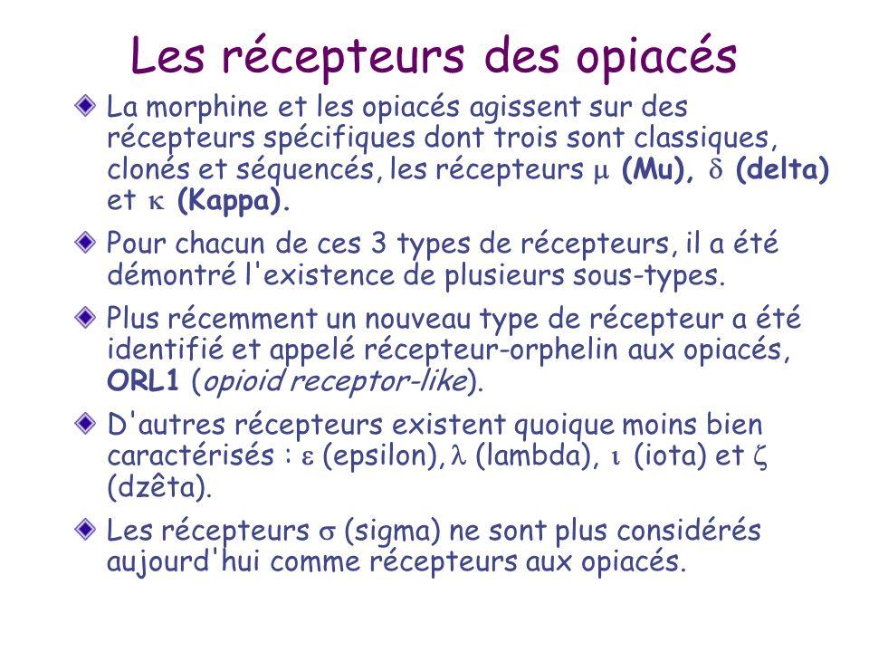 Les récepteurs des opiacés