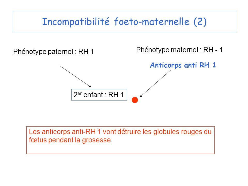 Incompatibilité foeto-maternelle (2)