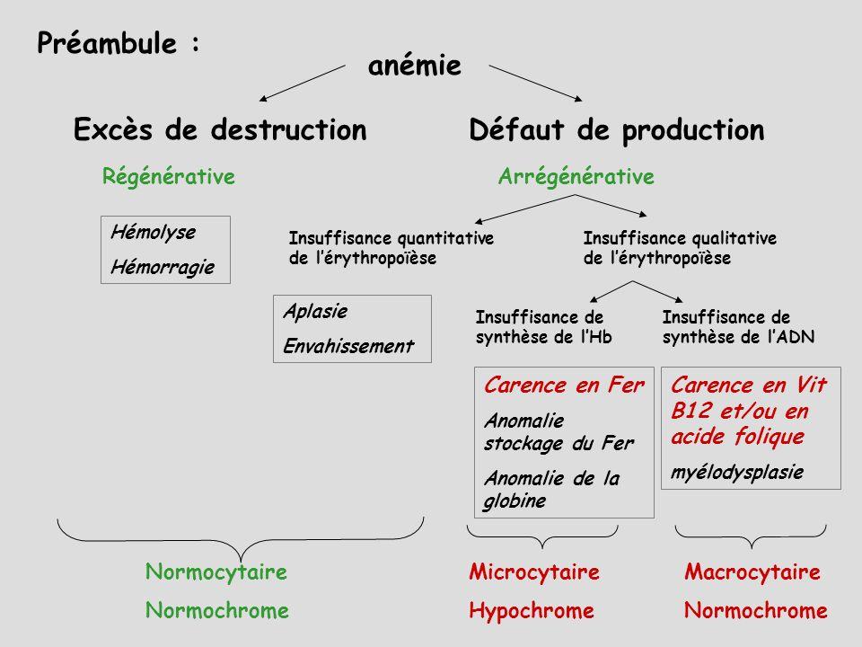 Préambule : anémie Excès de destruction Défaut de production