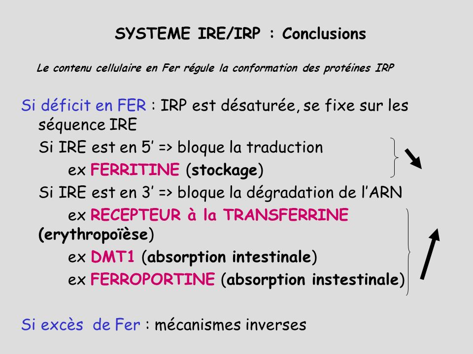 SYSTEME IRE/IRP : Conclusions