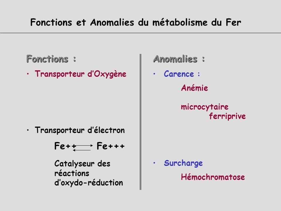 Fonctions et Anomalies du métabolisme du Fer