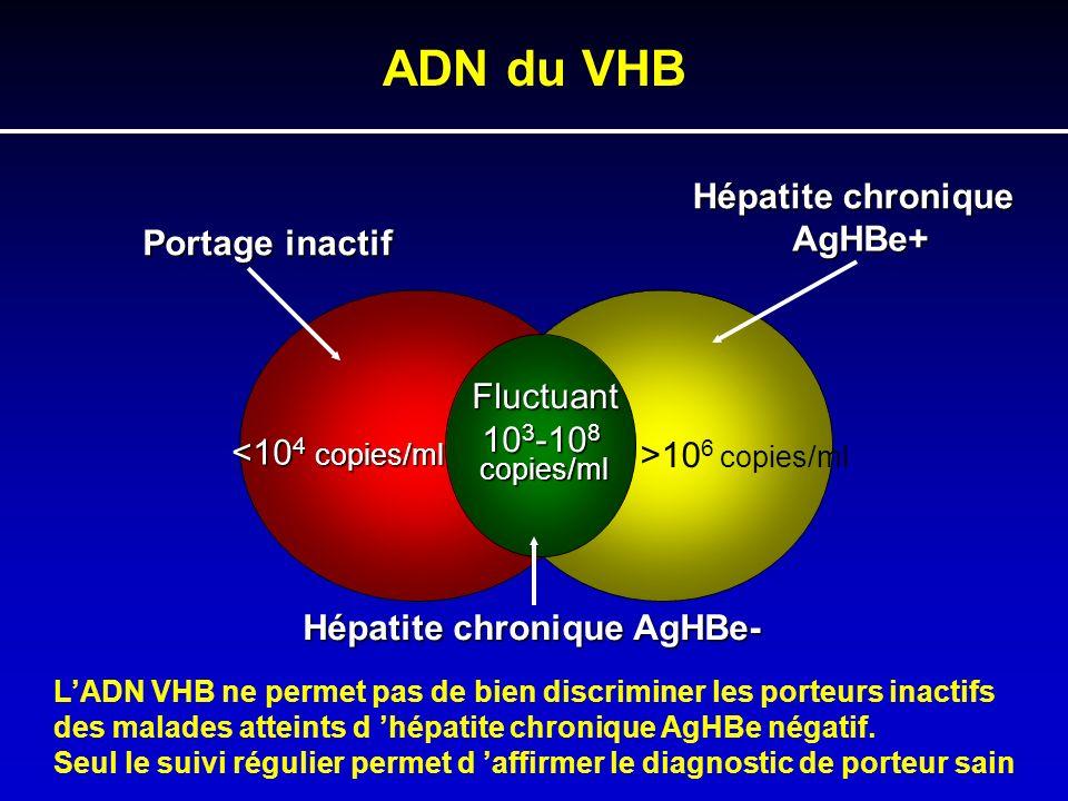 ADN du VHB Hépatite chronique AgHBe+ Portage inactif Fluctuant 103-108