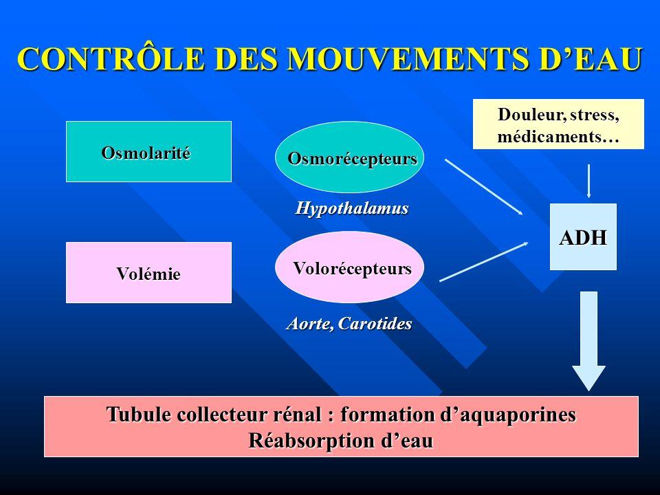 CONTRÔLE DES MOUVEMENTS D'EAU