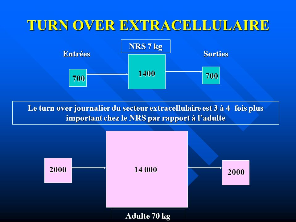 TURN OVER EXTRACELLULAIRE