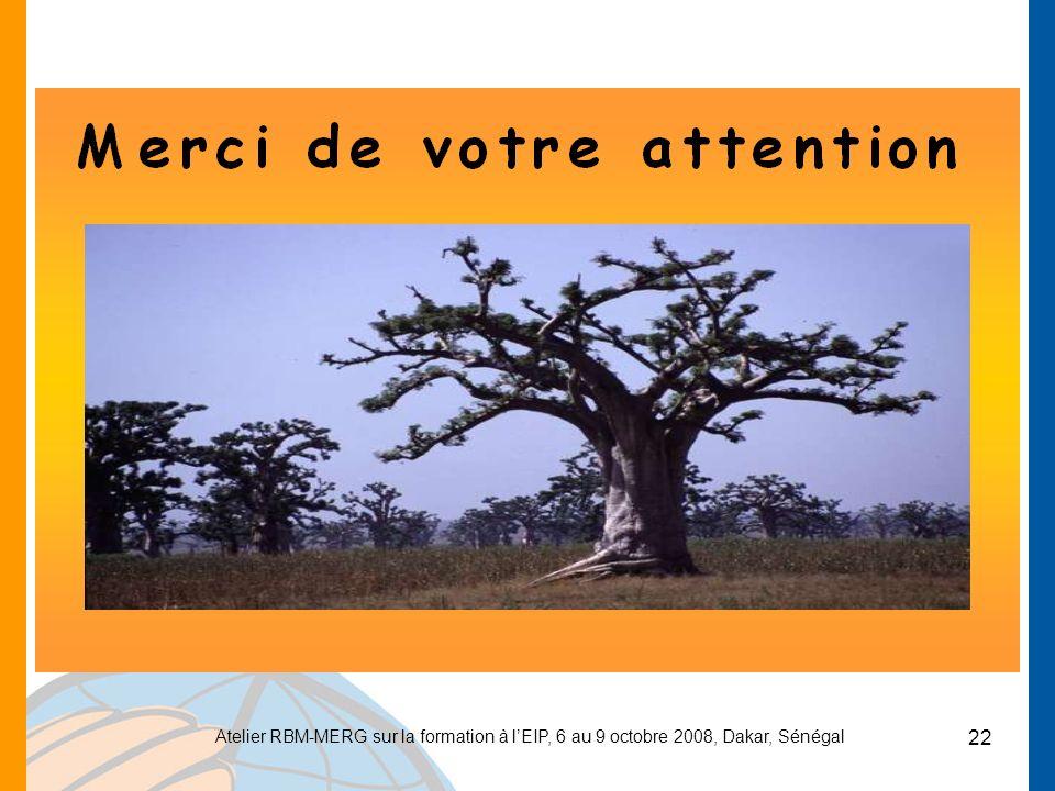 Atelier RBM-MERG sur la formation à l'EIP, 6 au 9 octobre 2008, Dakar, Sénégal