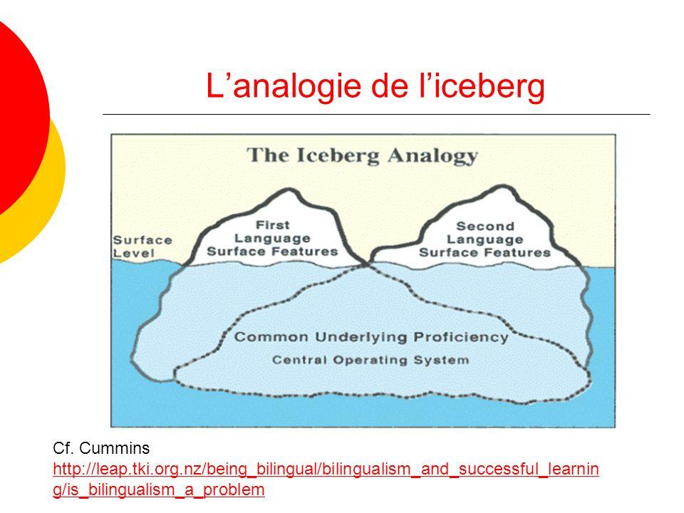 L'analogie de l'iceberg