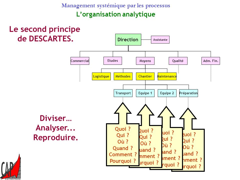 L'organisation analytique