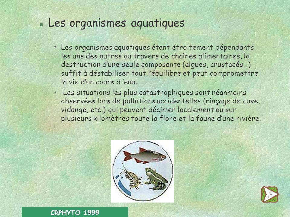 Les organismes aquatiques