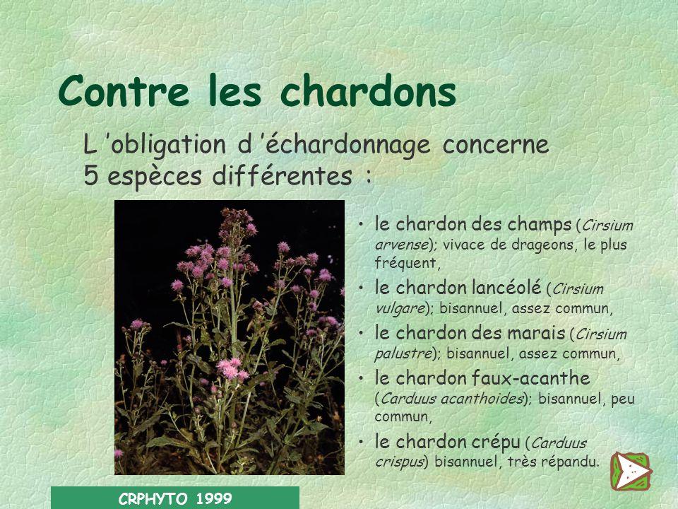 Contre les chardons L 'obligation d 'échardonnage concerne 5 espèces différentes :