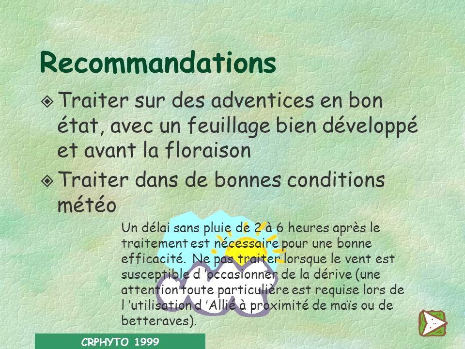 Recommandations Traiter sur des adventices en bon état, avec un feuillage bien développé et avant la floraison.