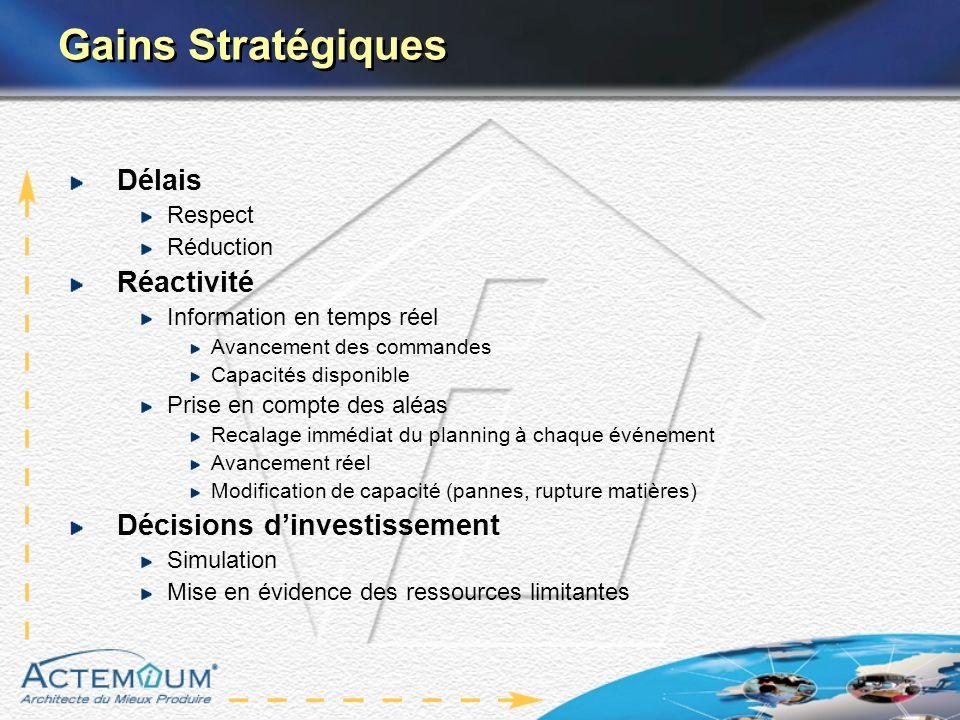 Gains Stratégiques Délais Réactivité Décisions d'investissement