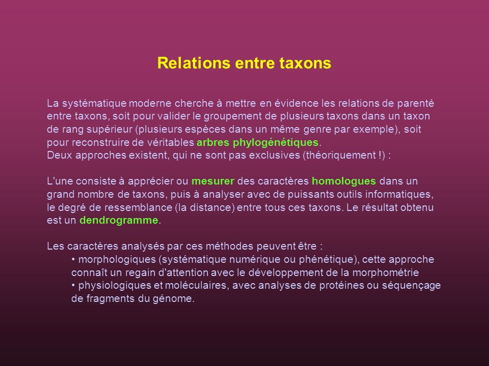 Relations entre taxons