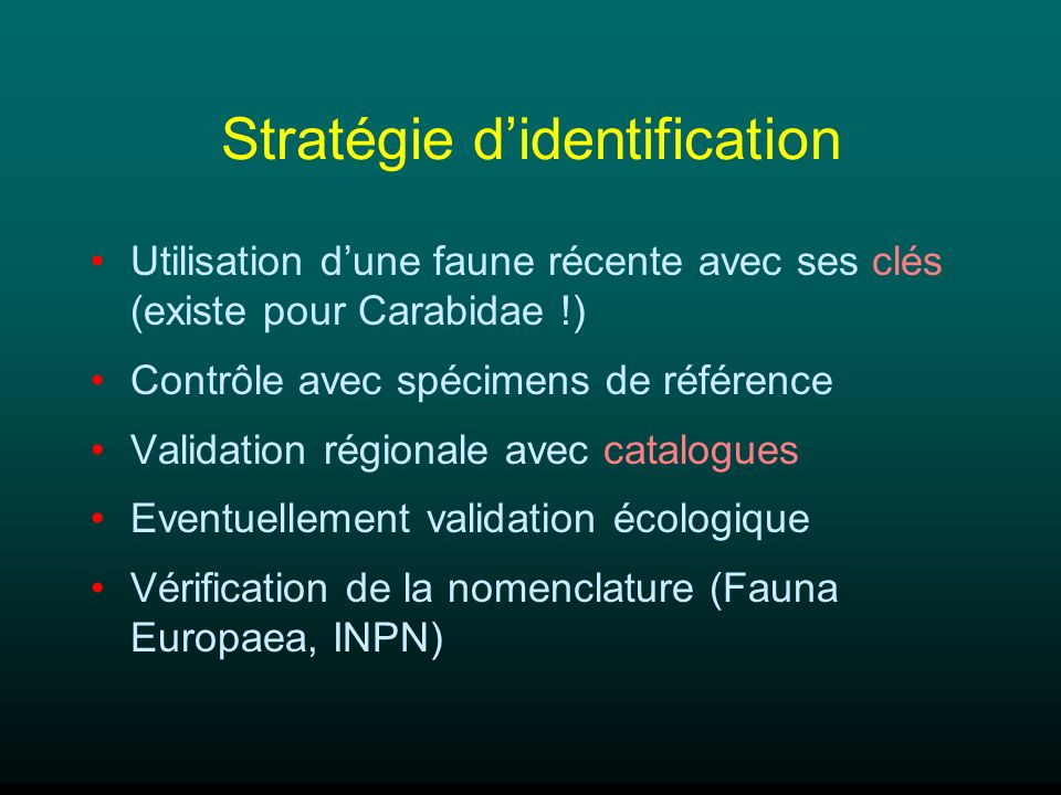 Stratégie d'identification