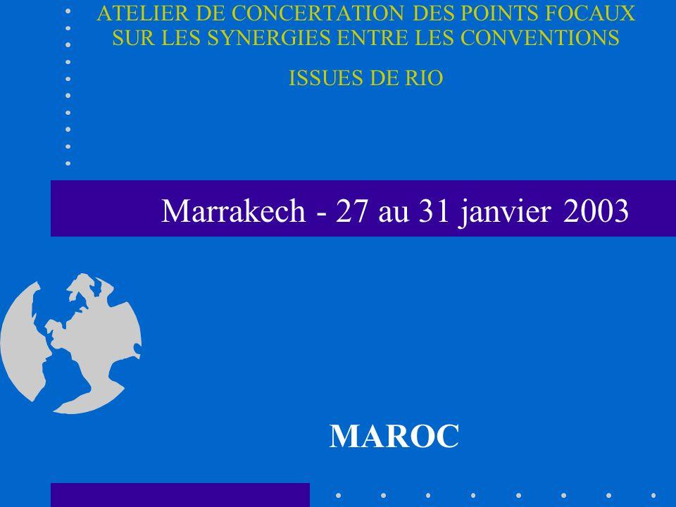 Marrakech - 27 au 31 janvier 2003 MAROC