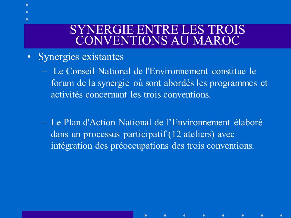 SYNERGIE ENTRE LES TROIS CONVENTIONS AU MAROC