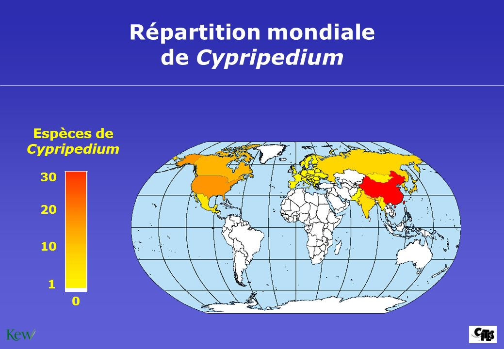 Répartition mondiale de Cypripedium