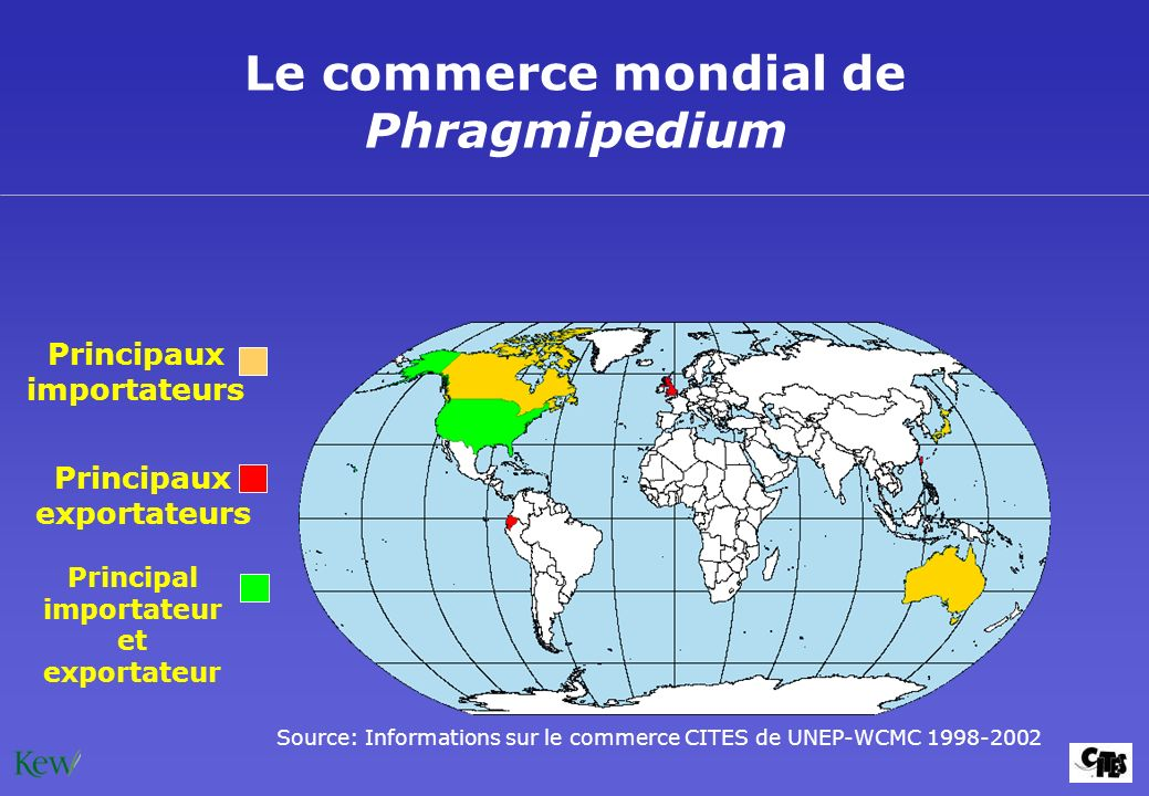 Le commerce mondial de Phragmipedium