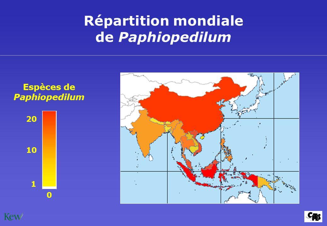 Répartition mondiale de Paphiopedilum