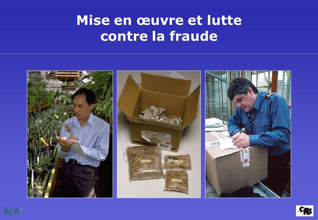 Mise en œuvre et lutte contre la fraude