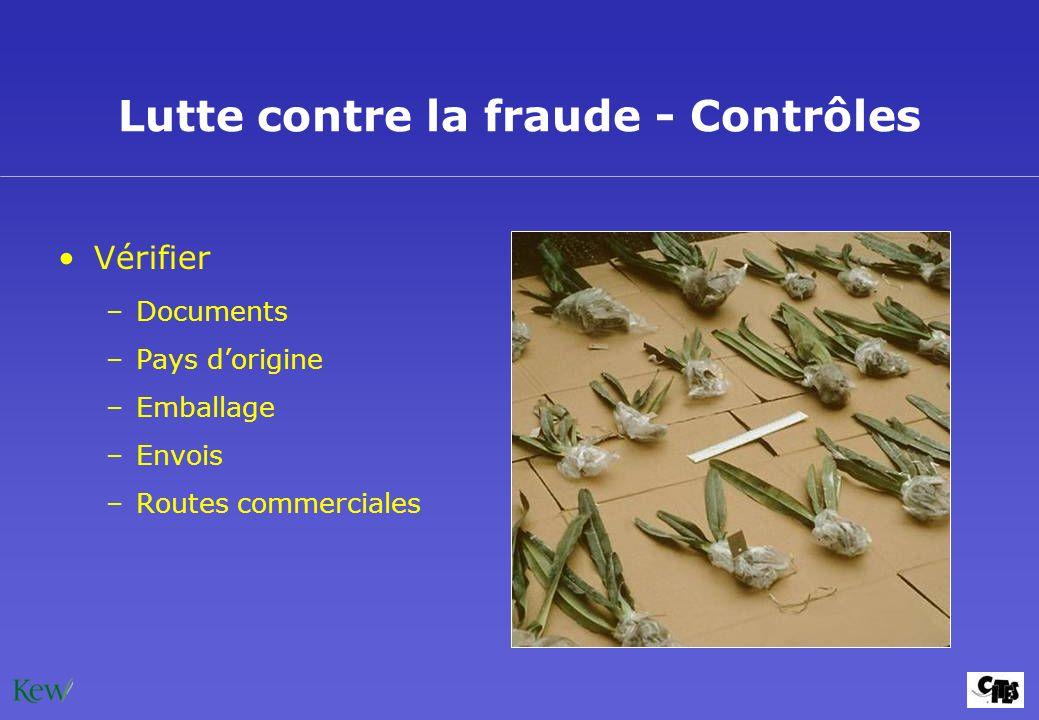 Lutte contre la fraude - Contrôles