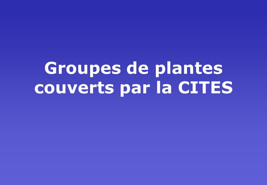 Groupes de plantes couverts par la CITES