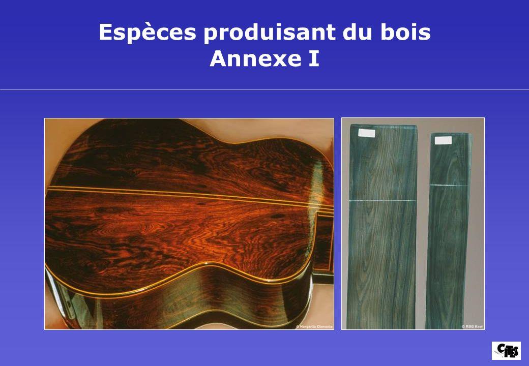 Espèces produisant du bois Annexe I