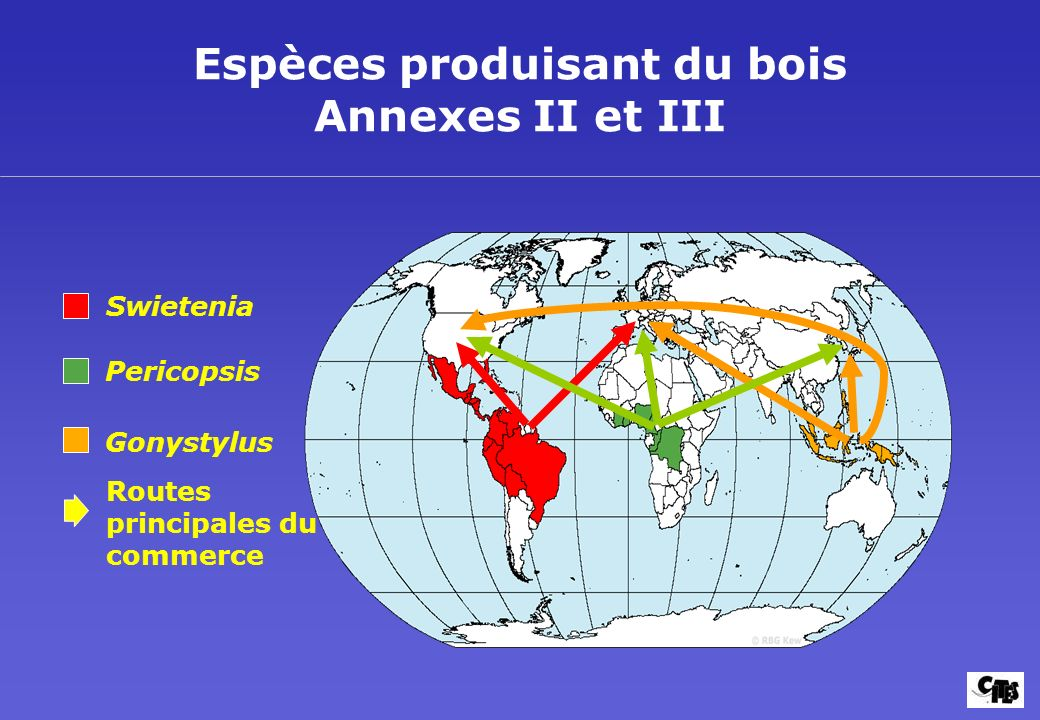 Espèces produisant du bois Annexes II et III