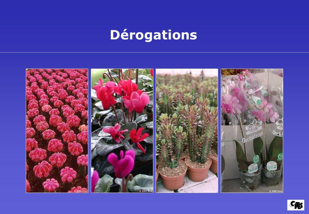 Groupes de plantes couverts par la CITES 36