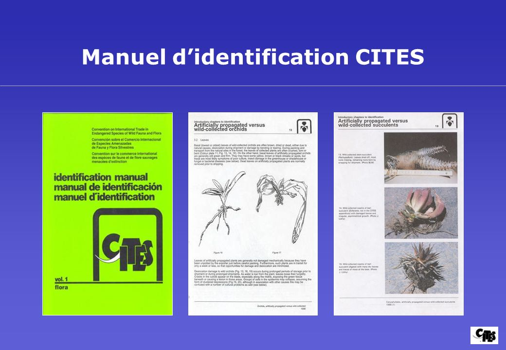 Manuel d'identification CITES