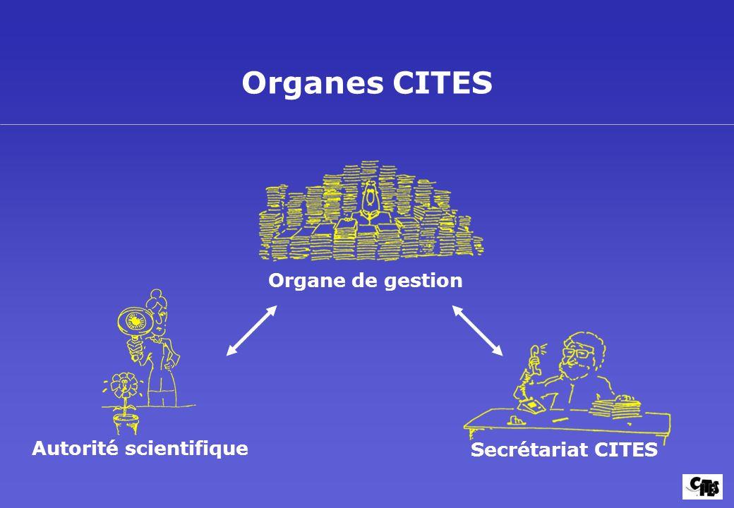 Autorité scientifique