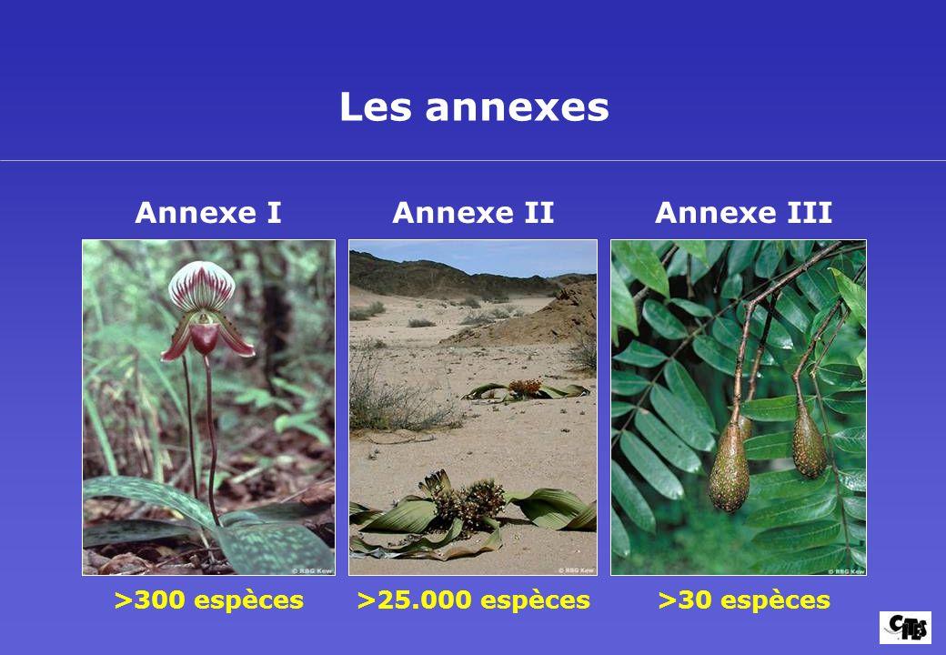Les annexes Annexe I Annexe II Annexe III >300 espèces