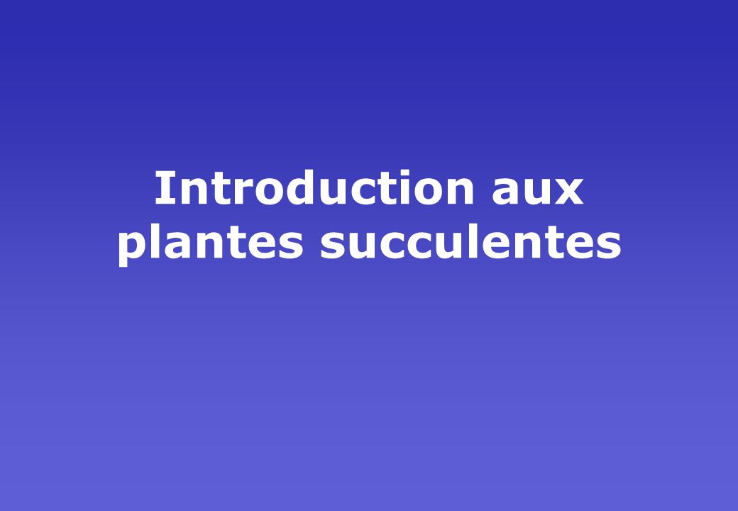 Introduction aux plantes succulentes