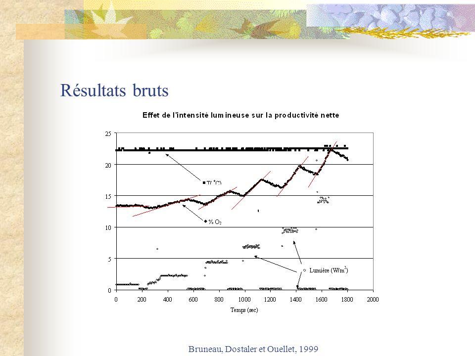 Bruneau, Dostaler et Ouellet, 1999