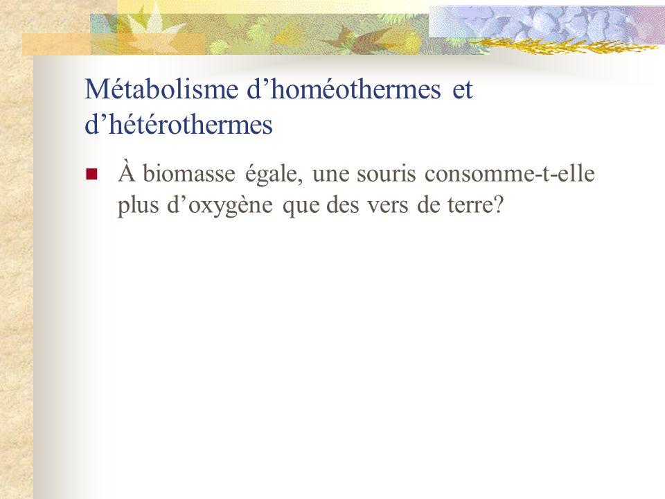 Métabolisme d'homéothermes et d'hétérothermes