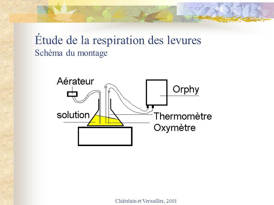Étude de la respiration des levures Schéma du montage