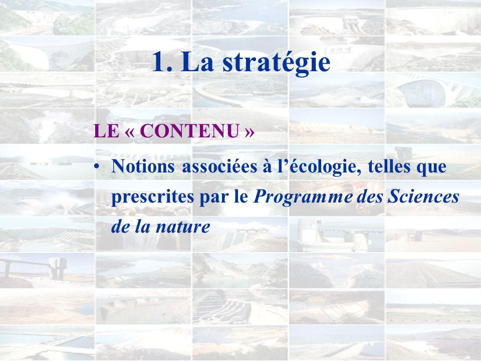 1. La stratégie LE « CONTENU »